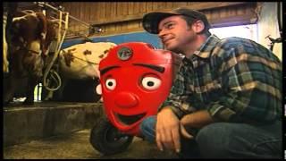 Przygody czerwonego traktorka - dojenie krów