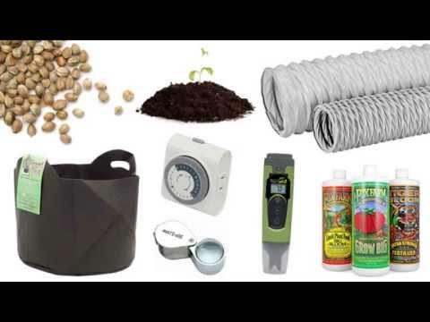 The Items You Need to Grow Marijuana Indoors