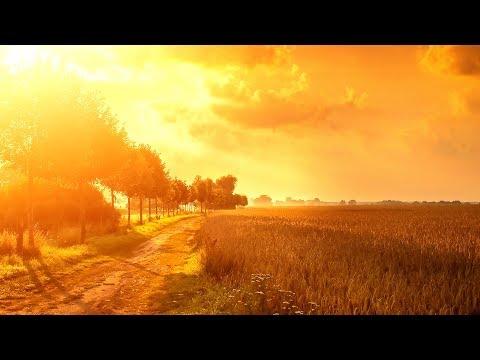 Jacob Henry & Approaching Black - Yesterday's Tears (Shingo Nakamura Remix) [Silk Music]