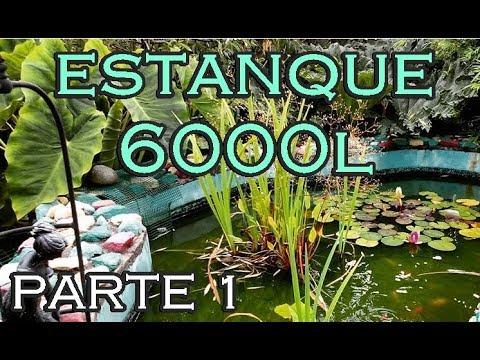 Construcci n de un estanque parte 1 http www for Estanques de tilapia
