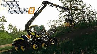 FARMING SIMULATOR 19 #160 - FACCIAMO DEL CIPPATO - GAMEPLAY ITA
