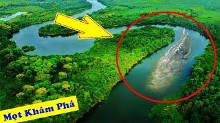 10 Quái Vật Đột Biến Khổng Lồ Khát Máu Chỉ Có Ở Amazon