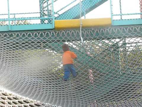 joey-climbing-up-the-nets-at-sea-world