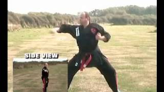 Heian Nidan slow motion to aid learning