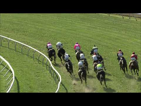 video thumbnail for MONMOUTH PARK 10-04-20 RACE 7