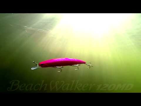 DUO`s Lures in Motion #17: Beach Walker 120MD