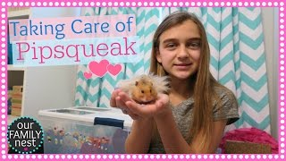TAKING CARE OF MY HAMSTER