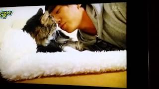 小山慶一郎(NEWS) - ニャン太