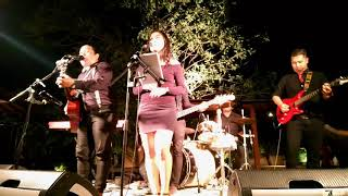 Perfect - Ed Sheeran Cover by Band Bali for any Event, Wedding, Birthday Party, New Year etc