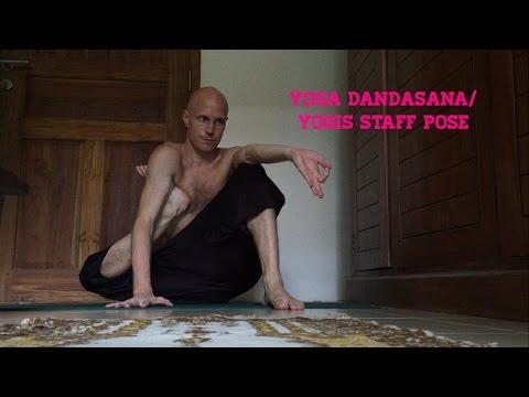 Yoga Dandasana/Yogis Staff Pose
