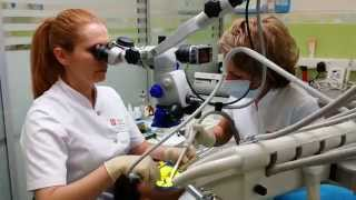 Ассистент врача стоматолога (ВАО)
