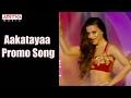 Aakatayi  Promo Song   Aakatayi Movie   Aashish Raj, Rukshar Mir   Rom Bhimana   Mani Sharma