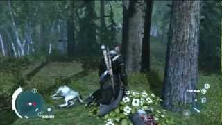 Assasins Creed 3 - Don