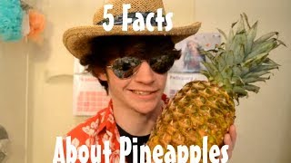 5 Facts About Pineapples