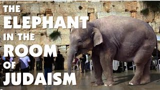 The ELEPHANT in the ROOM of JUDAISM ● Rabbi Michael Skobac - Jews for Judaism