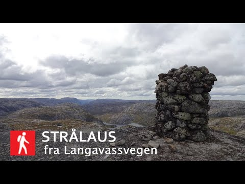 Strålaus (1142 moh)