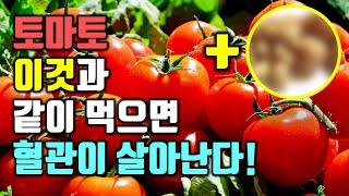 토마토를 이것과 같이 먹으면 혈관이 살아난다!(항암효과…