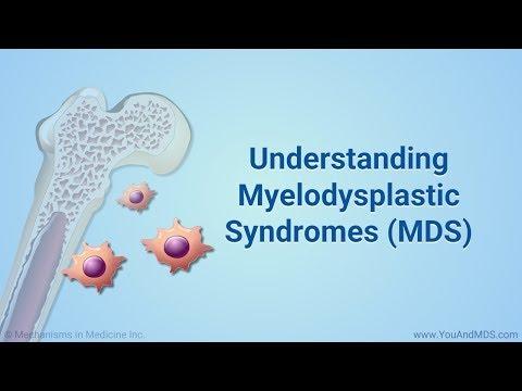 Understanding Myelodysplastic Syndromes (MDS)