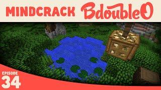 Minecraft :: Tree Lake :: Mindcrack Server :: Episode 34