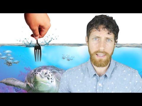 Is Your Diet Destroying the Ocean?