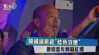 韓國瑜掀起「鯰魚效應」 猶如當年倒扁紅潮