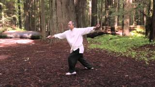 Tai Chi Sword 54-form by Master Yang (YMAA) 楊氏太極劍 - 五十四式