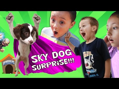 Thumbnail: THE SKYLANDER DOG SURPRISE!! (Sky Kids Get a Puppy from Kaos?)