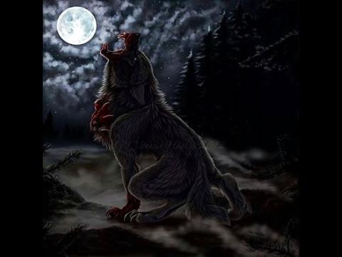 Baixar Blackwolf FFXV - Download Blackwolf FFXV | DL Músicas