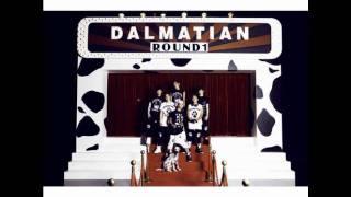 Dalmatian- Round 1