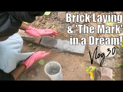 VLOG 30 FINALLY TO BRICK LAYING! SAW 'THE MARK' IN A DREAM!? ERRANDS, BUILDING TINY HOUSE