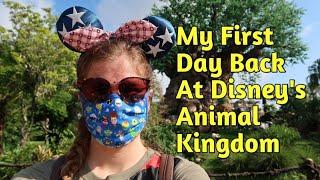 My First Day Back at Disney's Animal Kingdom