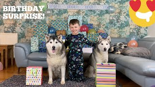 DOGS HILARIOUS BIRTHDAY PRANK ON KADES 7th BIRTHDAY SURPRISE!!