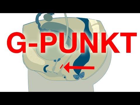 G-PUNKT finden und stimulieren! Freundin zum Orgasmus bringen!