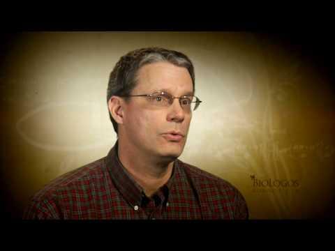 Peter Enns on Incarnational Scripture