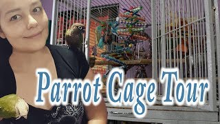 Green Cheek Conure Cage Tour