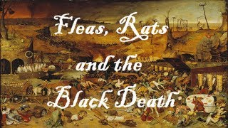 Video Fleas, Rats and the Black Death: What was Bubonic Plague? [School History Science Education] download MP3, 3GP, MP4, WEBM, AVI, FLV Mei 2018