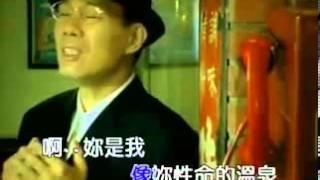 陳雷-無緣的牽掛