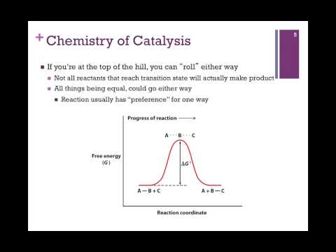 036-Chemistry of Catalysis
