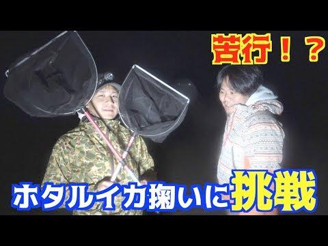 夜のホタルイカ掬いに挑戦!爆湧きなるか!?
