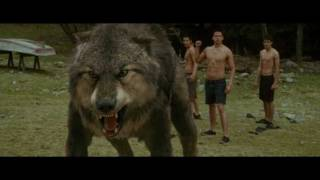 "Transformation Jacob to Wolf | ""The Twilight Saga: New Moon"" \ HD"