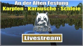 Russian Fishing 4: Alten Festung mit Grundrute - Karpfen Karausche & Schleie | Livestream Deutsch