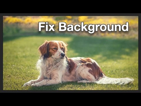 Dog Photo Manipulation | Background Photoshop Tutorial