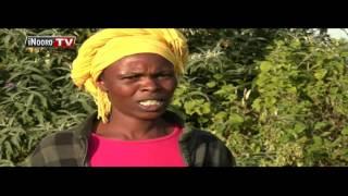 Mary Waithira, uria riu urenda gucenjia riitwa etagwo James Karanja