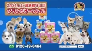 2015年2月21日(土)、ペットショップCoo&RIKU77店舗目となる瀬港線守山...