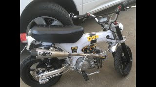 Honda White Dax with Zongshen 190cc 5 Speed start up and walk around
