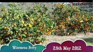 Fords Farm Wisemens Ferry NSW