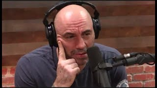 "Joe Rogan SHOCKED By Mistreatment of Whales ""They"