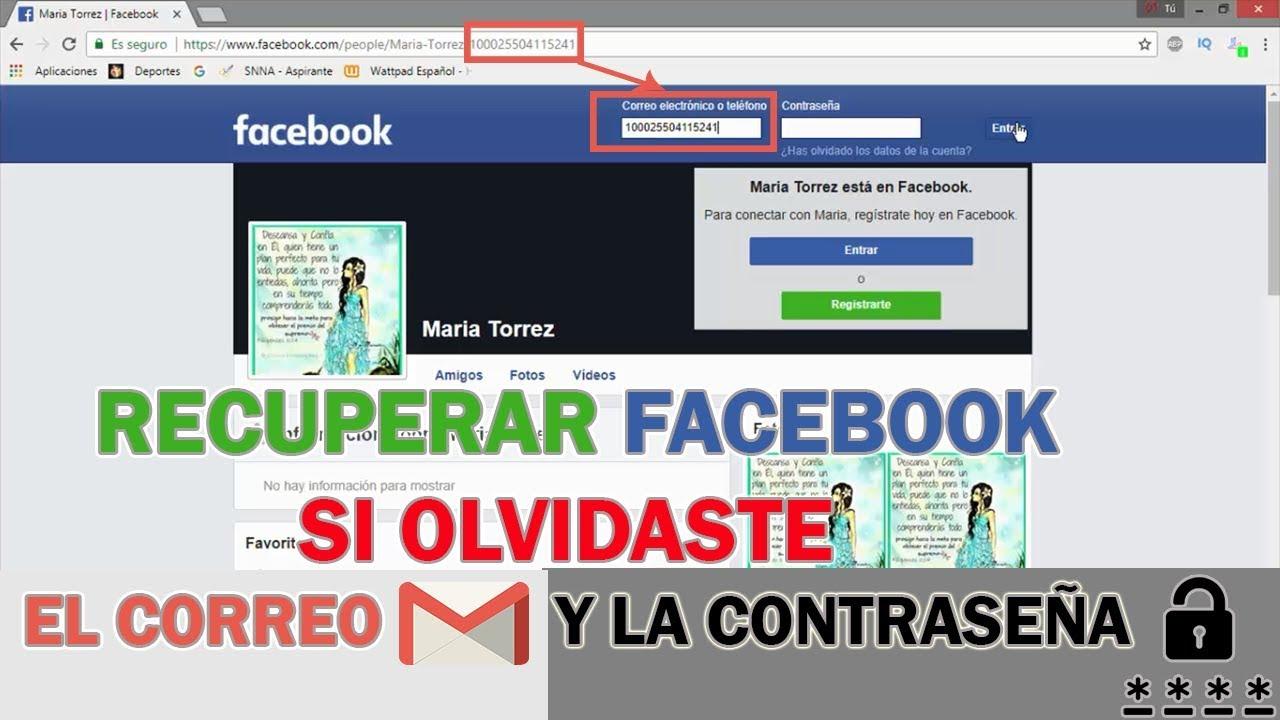 Como Recuperar Tu Cuenta De Facebook Sin Correo Sin Teléfono Y Sin Contraseña Desde Tu Celular Youtube