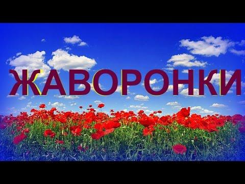 Жаворонки Полевые - Russian Field -Lark Singing