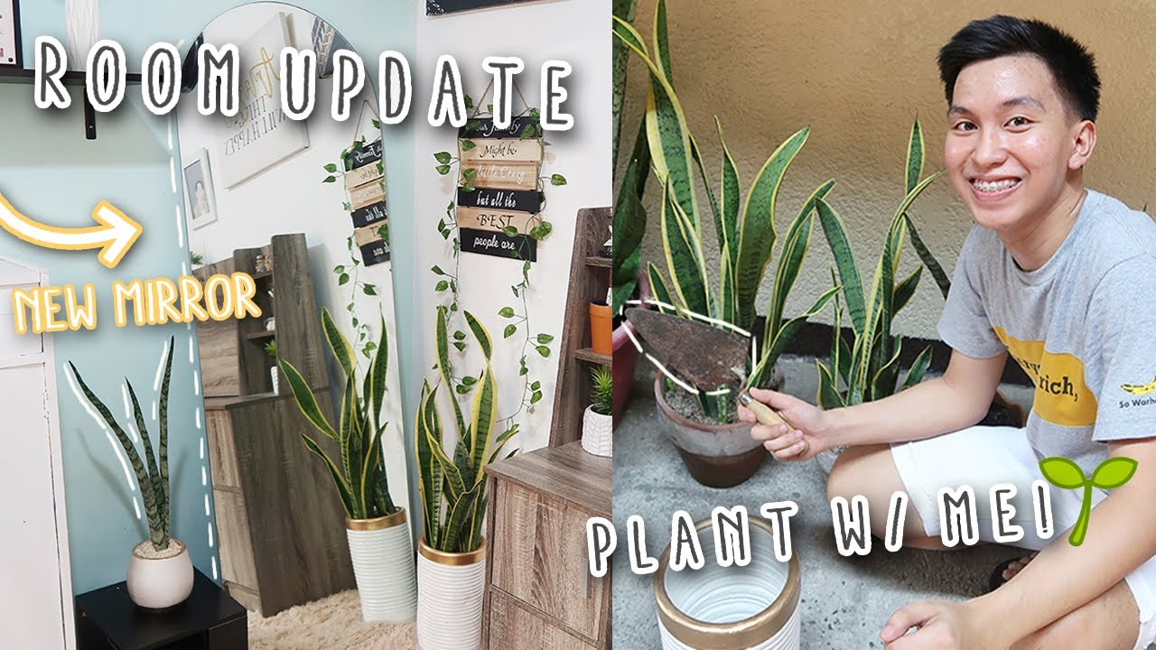 ROOM UPDATE! (New Mirror & Decor) + Plant With Me 🌱